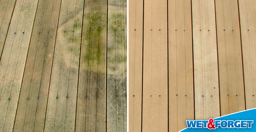 Ask Wet Amp Forget Defeat Fall Mold And Mildew With Wet