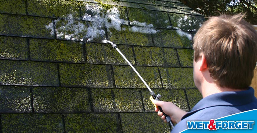 Ask Wet U0026 Forget 6 Reasons To Clean Your Roof With Wet U0026 Forget Outdoor  This Spring | Ask Wet U0026 Forget