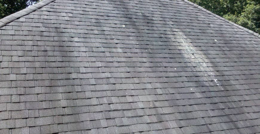 Ask Wet Forget See the 4 Reasons Wet Forget Outdoor is Your – Mold On Roof Shingles