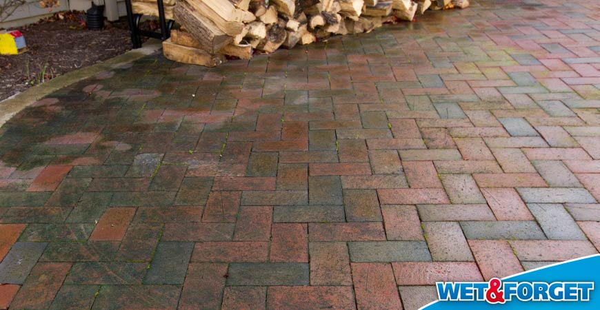 Wet U0026 Forget Outdoor: Your Ideal Brick Cleaner