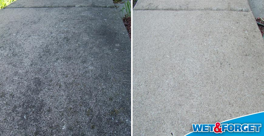 Ask wet forget see the top 6 zones where wet forget for What to clean concrete with
