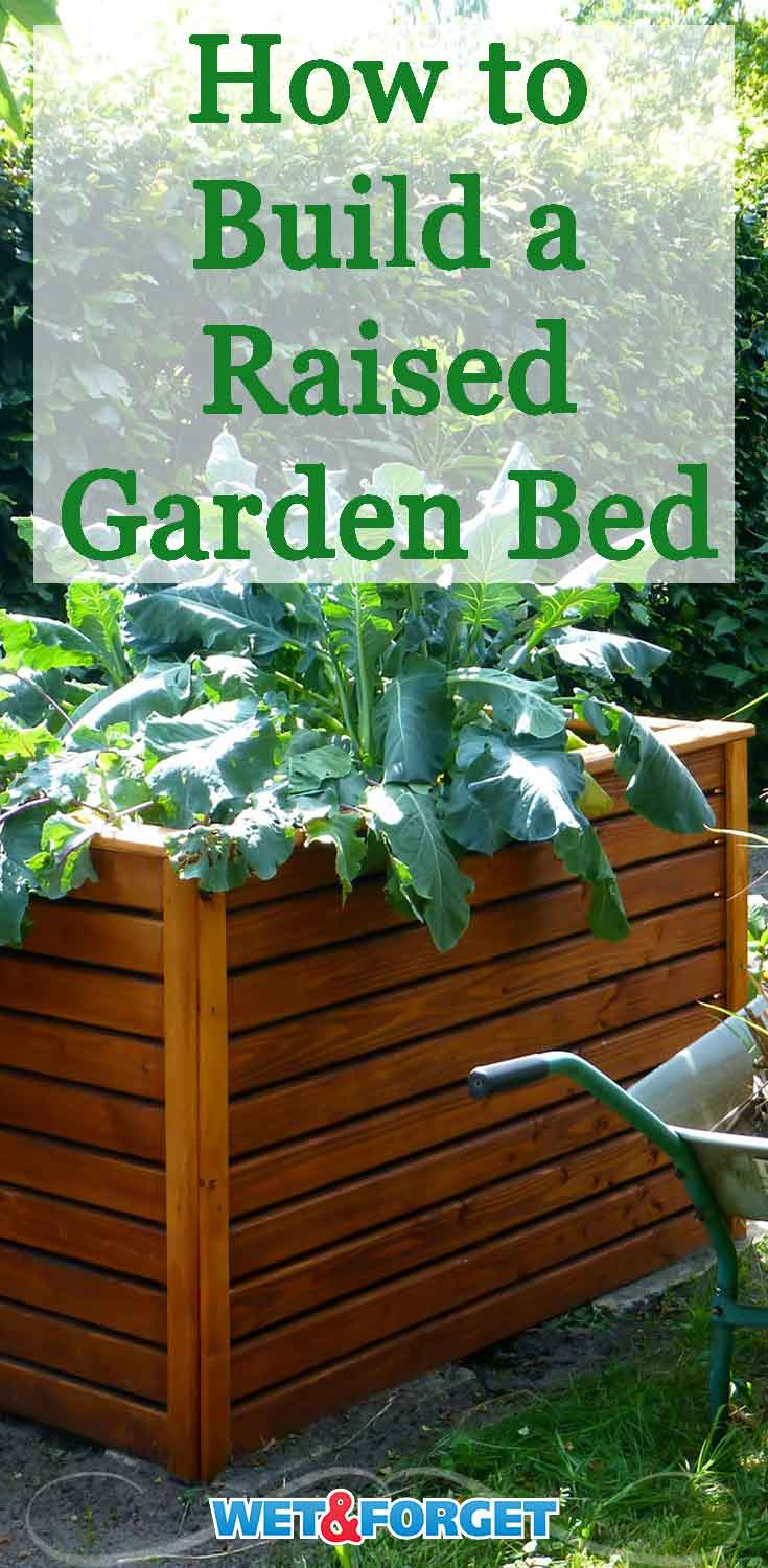Ask Wet & Forget Build a Raised Garden Bed and Super-Charge Your ...