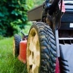 Pick the Best Lawn Mower for a Gorgeous, Stress-Free Lawn