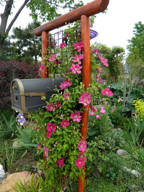 Trellis For Clematis Ideas Part - 21: Mailbox Makeover
