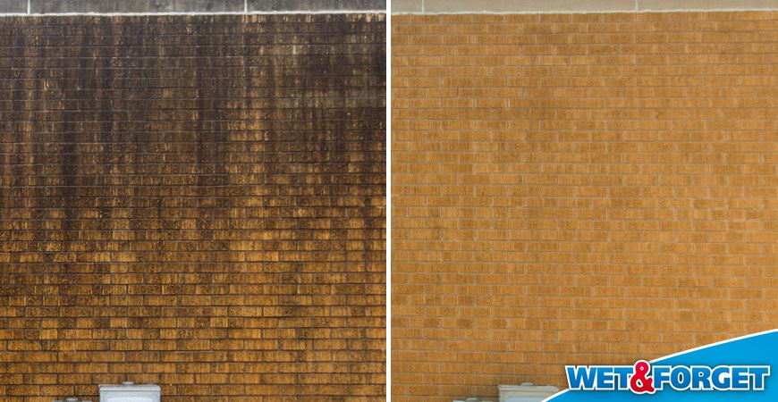 Attractive Wet U0026 Forget Outdoor Eliminates Black Algae On Your Roof With No Scrubbing,  Rinsing Or Pressure Washing Needed.