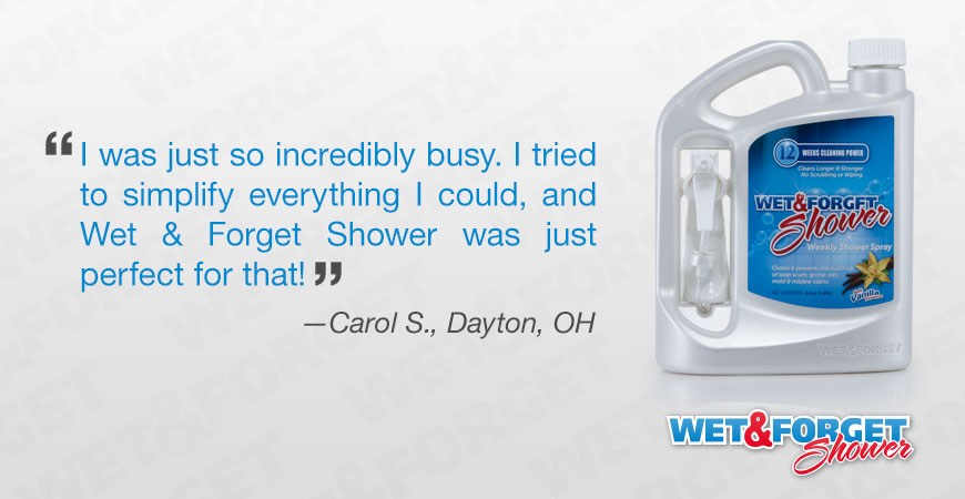 carol made her shower shine for the holidays with wet u0026 forget shower