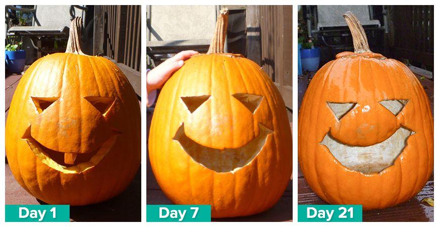 preserve a carved pumpkin
