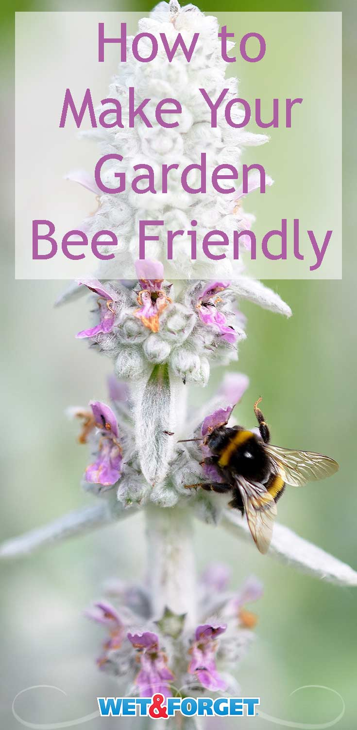 These quick ideas are sure to welcome bees to your garden!