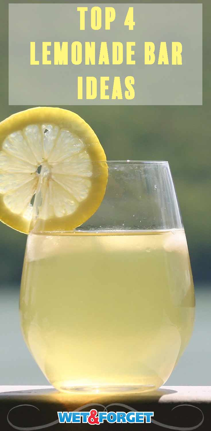 Cool off this summer with a lemonade bar! Check out our favorite ideas and recipes.