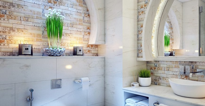 Bathroom Plants That Thrive With Or Without Sunlight