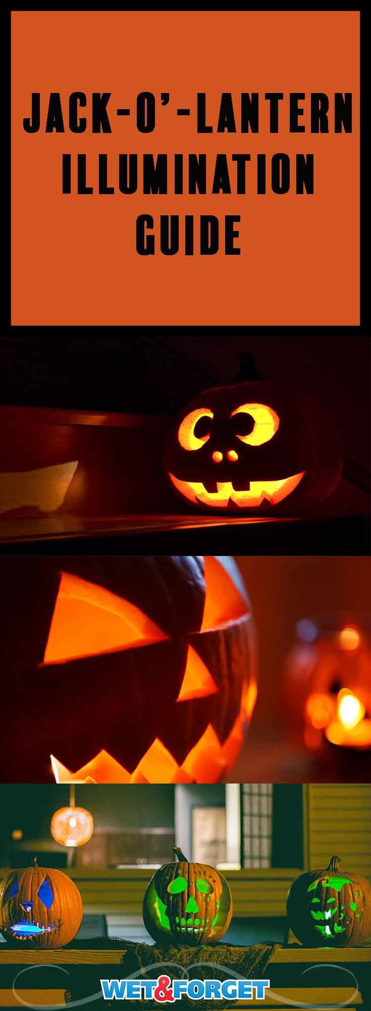 Picking out the right type of light for your jack-o'-lantern can be tough. Choose the right option for your pumpkin with our easy to follow guide.