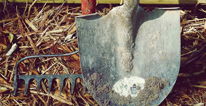 Clean up caked on dirt on your gardening tools before the start of spring.