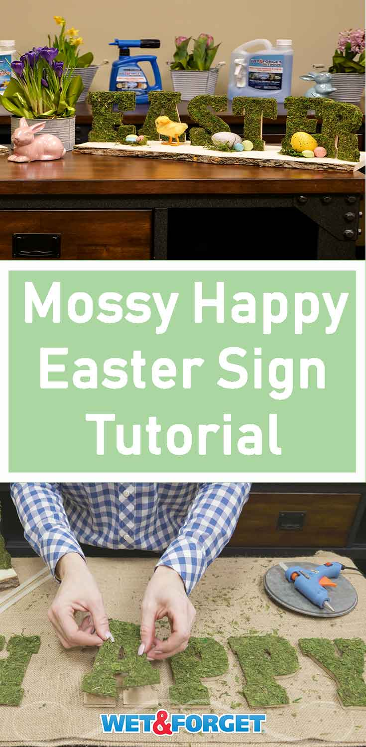 Bring mother nature into your home with this DIY moss Happy Easter sign! Create this mossy sign to make it in a few simple steps.