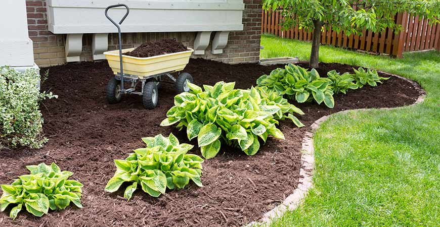 Add mulch to your backyard this spring!