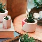 5 Outdoors-Inspired DIY Nature Home Décor Ideas