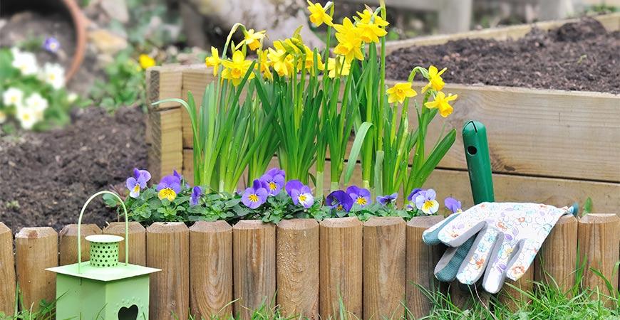 Best Flower Bed Border Ideas For Savvy Home Gardeners