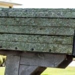 Stuck with Stubborn Lichen? Wipe it out with Wet & Forget Outdoor!