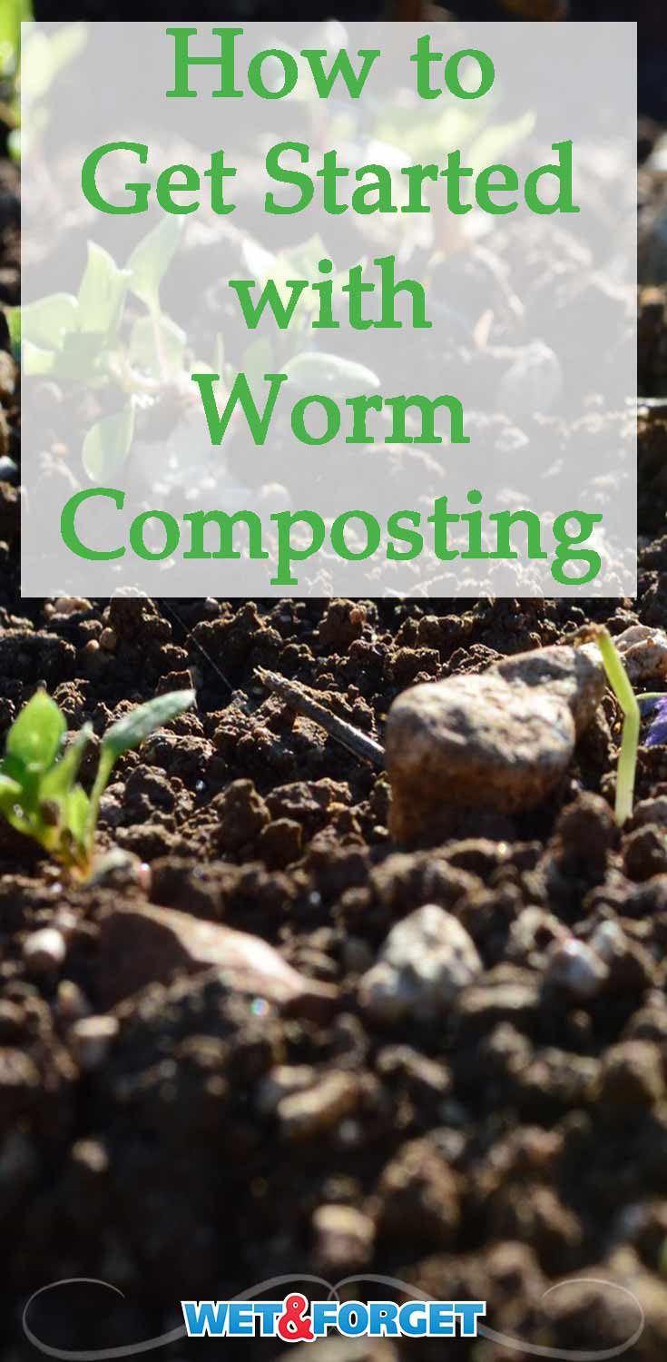 Find out how worm composting can benefit your garden with these basic tips!