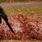 The 5 Easiest Ways to Remove Fall Leaves