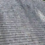 See the 4 Reasons Wet & Forget Outdoor is Your Roof's Best Friend