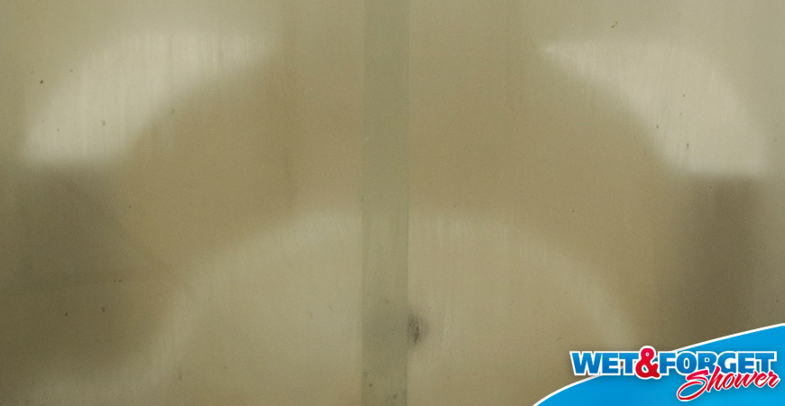 shower mold