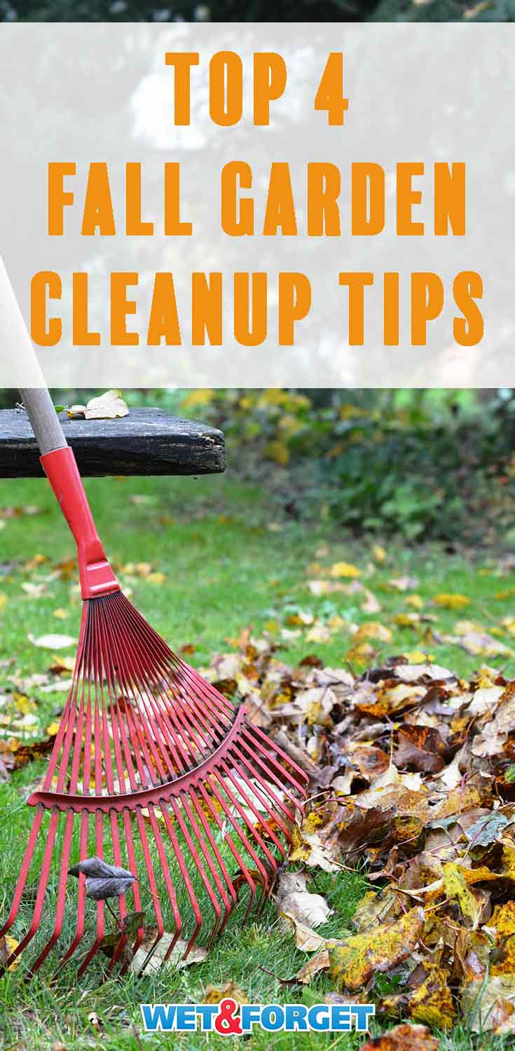 As leaves begin to fall it's time to start your autumn clean up! Follow these 4 tips to streamline your fall garden cleanup this year.