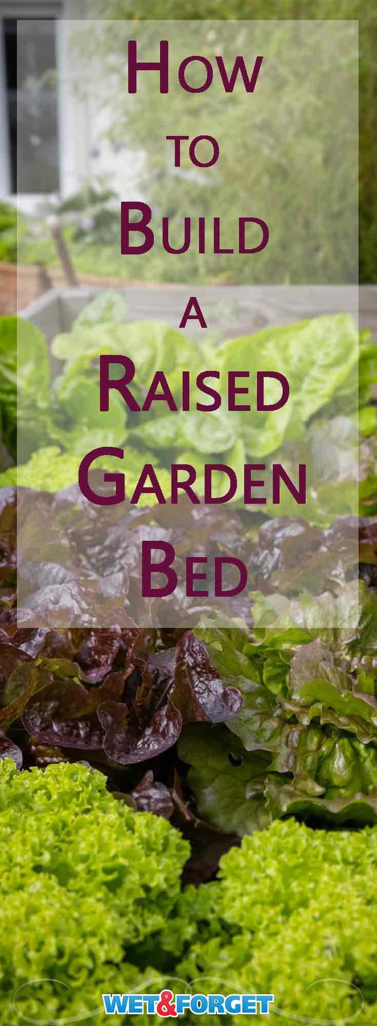 Adding a raised garden bed to your yard can be very beneficial. Not only do raised garden beds have a longer growing season, they also make it easier to optimize your soil composition. Discover how to build your own raised garden bed and enjoy your harvest.