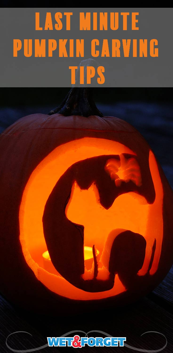 Did you leave your pumpkin carving to last minute this year? Don't fret! Follow these quick tips to make carving even easier.