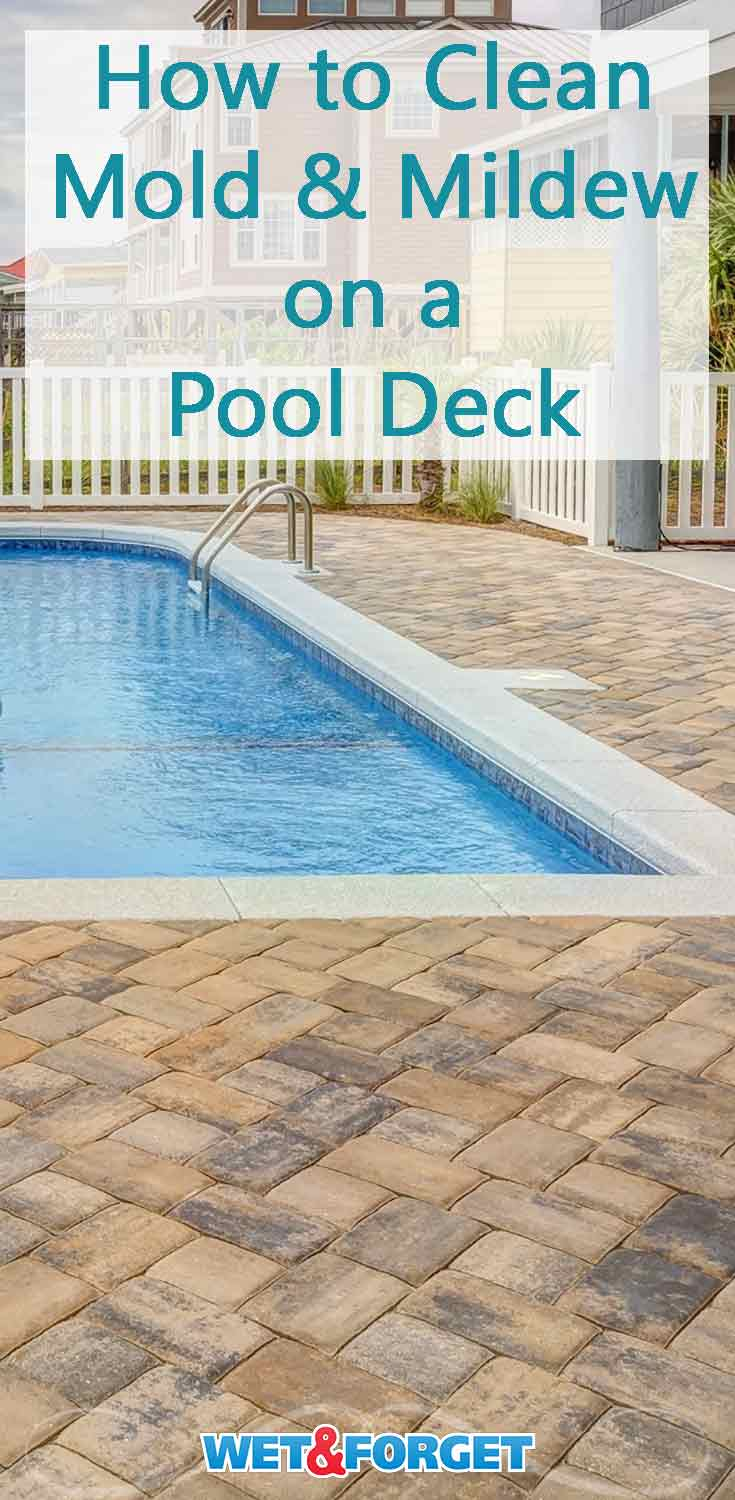 Are you starting to prep your pool deck for the upcoming summer season? Remove those unsightly black stains on your pool deck with this simple method!