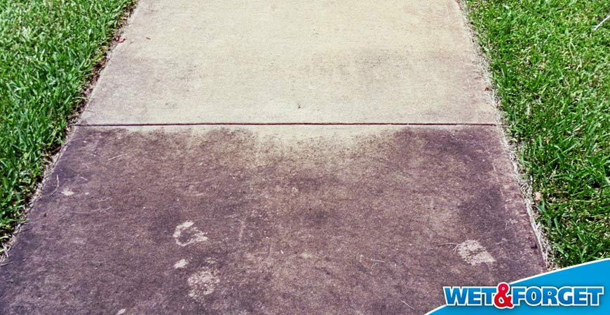wet & forget removes sidewalk mold