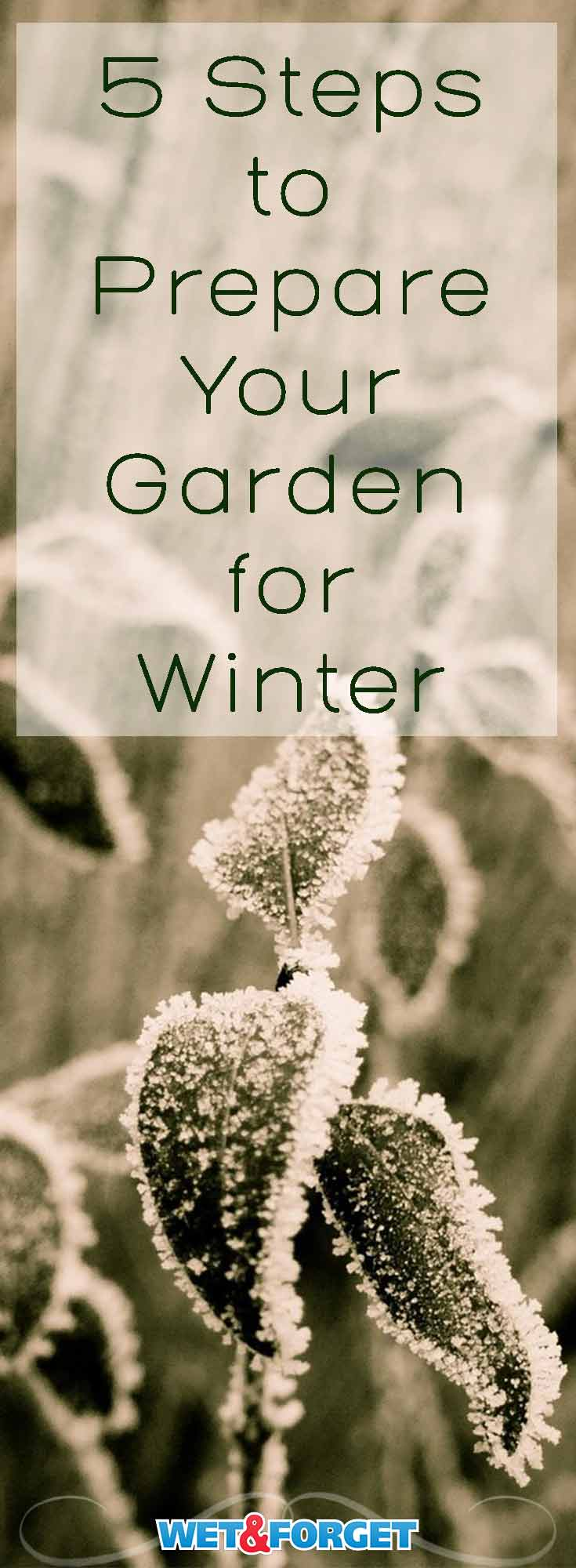 The winter weather is slowly starting to roll in. Make sure your garden is prepared for the temperature change and snow with these our easy guide.