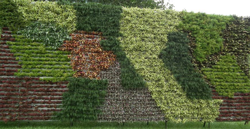 Ask Wet & Forget Build A Vertical Garden And Turn A Small