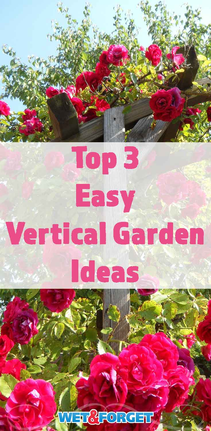 Vertical gardening is a great way to grow many beautiful blooms in a small garden! Check out the top 3 methods to easily start a vertical garden.