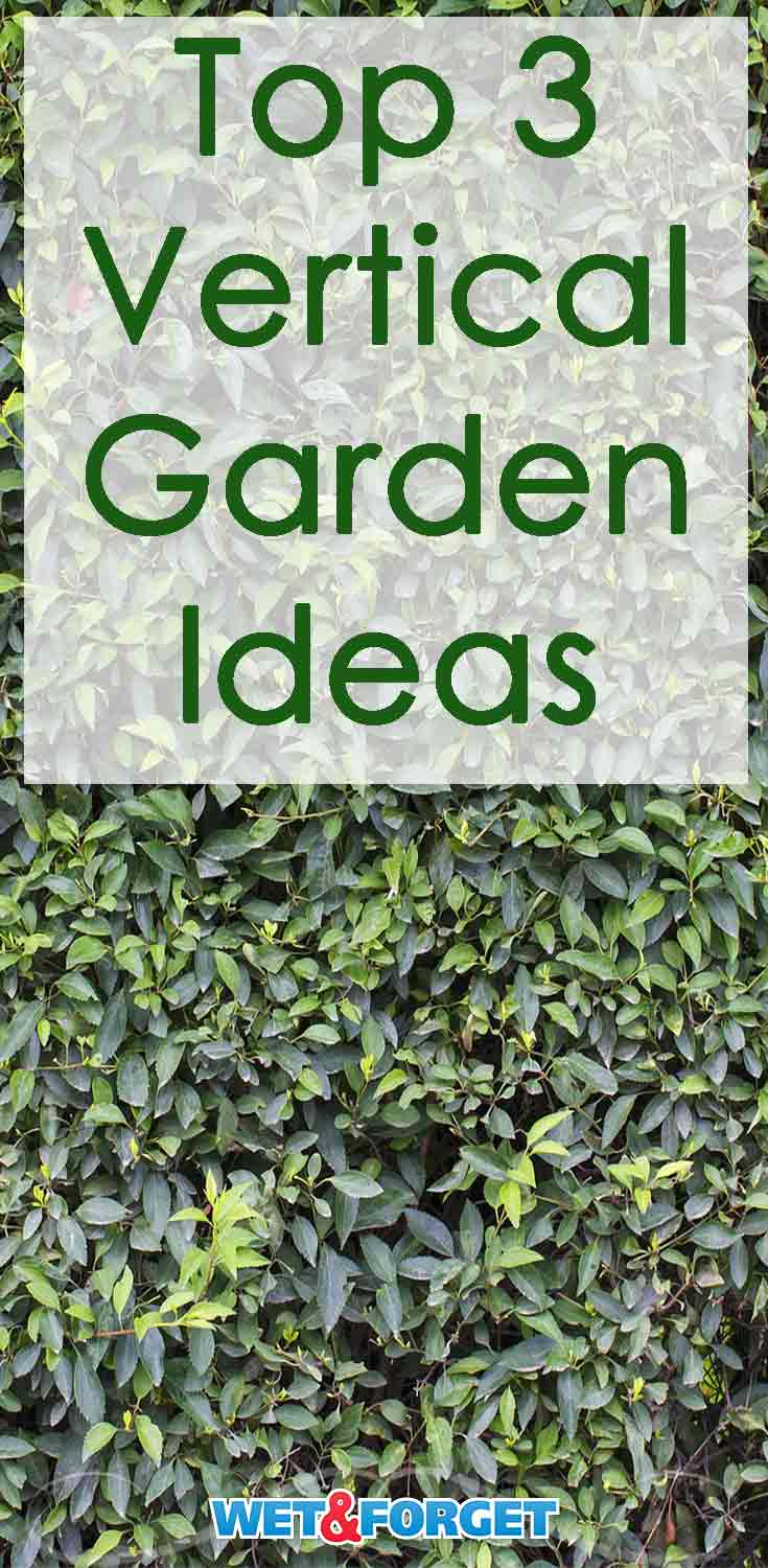 Pick out the most suitable vertical garden idea for your backyard and save space this spring!