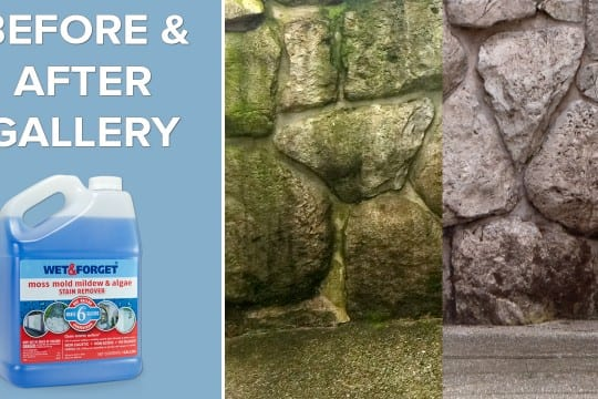 Wet Forget Outdoor Clean Any Exterior Surface