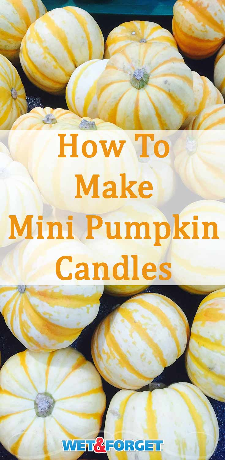 Celebrate fall by making mini cinnamon pumpkin candles with our step-by-step tutorial!