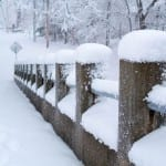 How to Survive Winter's Extended Deep Freeze