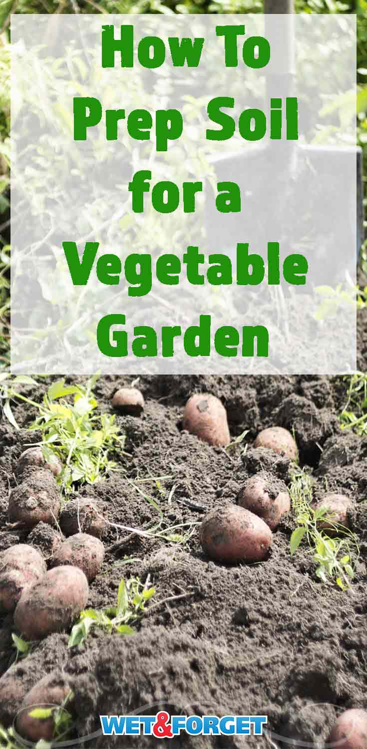 Prep the soil in your garden for healthy vegetable plants and a bountiful harvest with these tips!