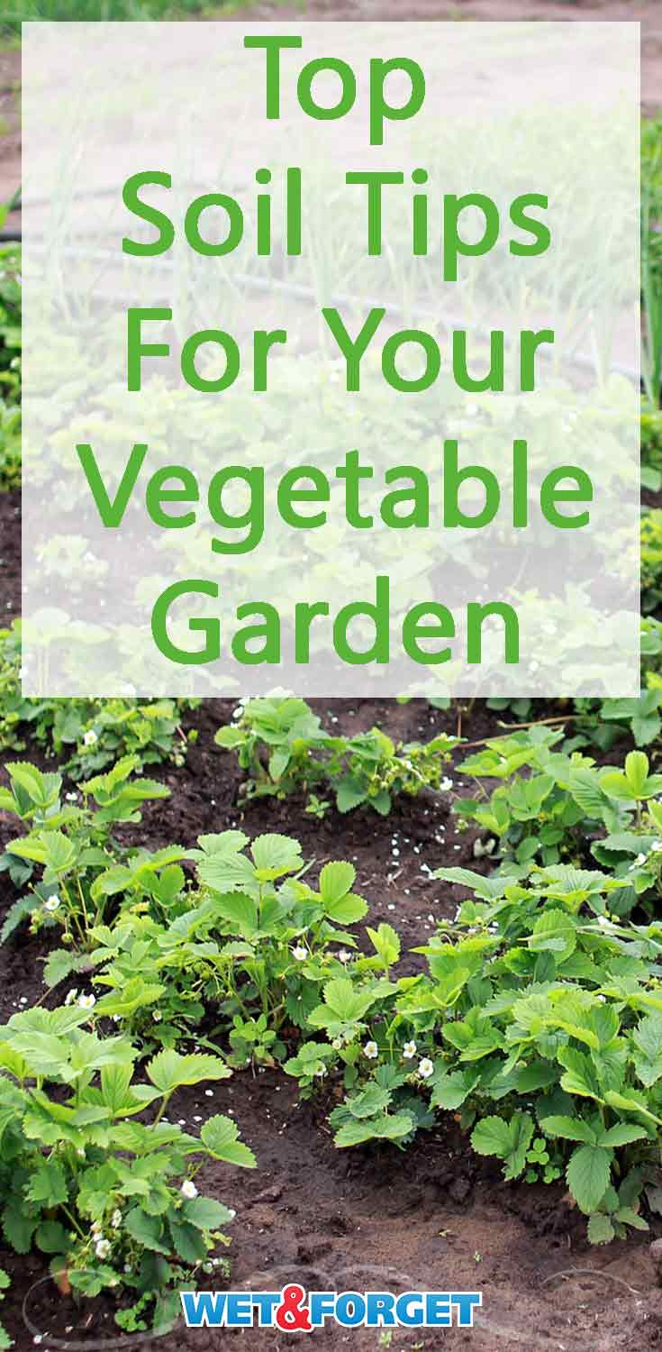 Get the soil in your garden ready for planting vegetables with these key tips!