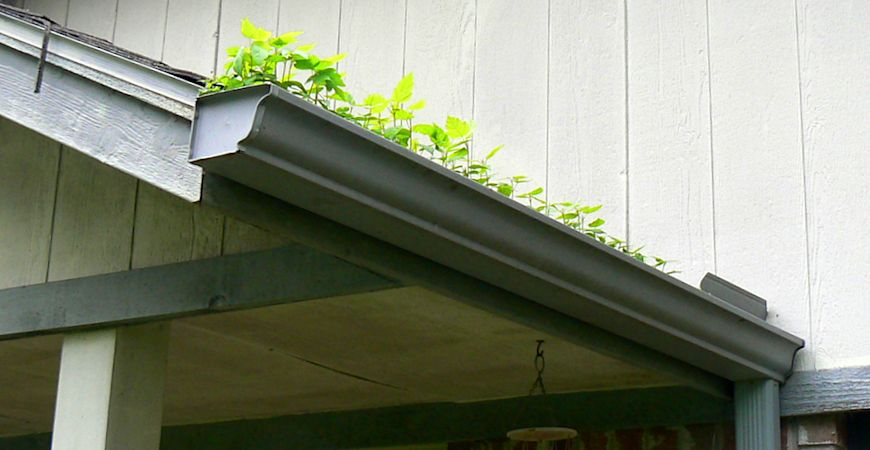 rain gutter cleaning