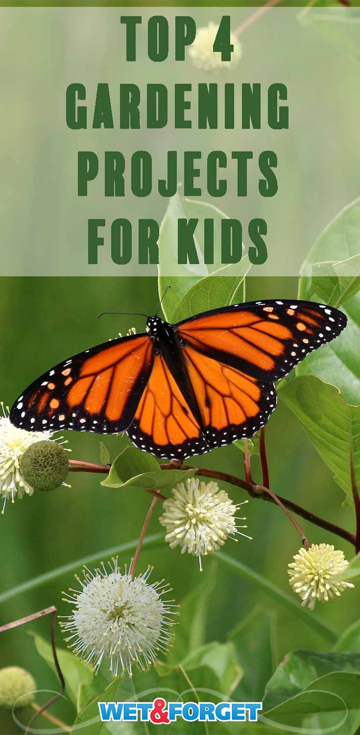 Discover different ways to get your kids involved in the garden with these clever projects!
