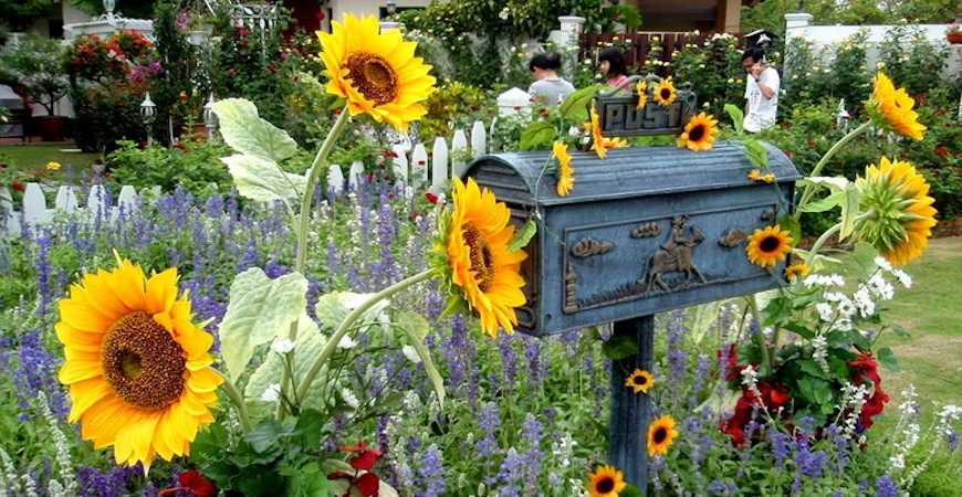 mailbox decorating ideas