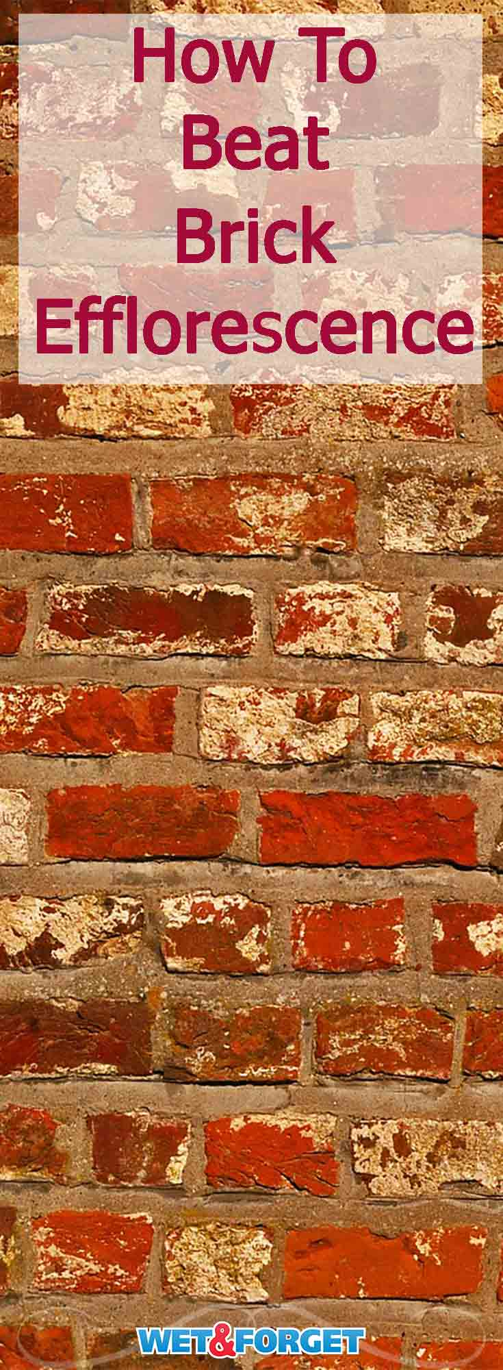 White deposits can build up on brick and give it an unattractive appearance. Learn what causes brick efflorescence and how to remove it with this easy method!