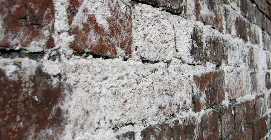 Brick Efflorescence What It Is And How To Beat It Life S Dirty Clean Easy
