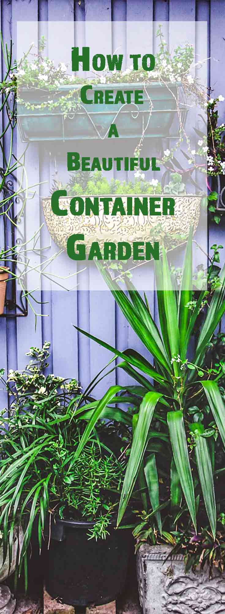 Container gardens are a perfect way to highlight your outdoor space. You don't have to be master gardener to craft a container garden. Follow our 4 simple steps to create a beautiful container garden!