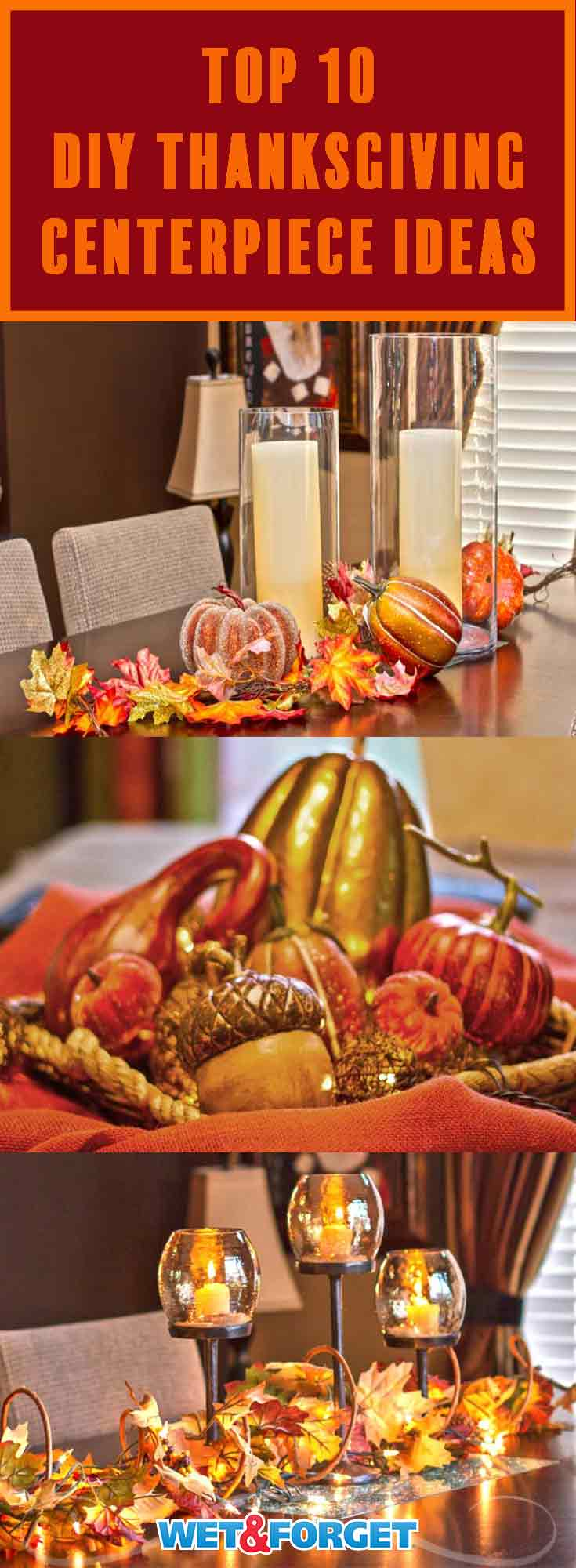 Thanksgiving is right around the corner! Add the perfect finishing touch to your table with one of our easy DIY centerpiece ideas!