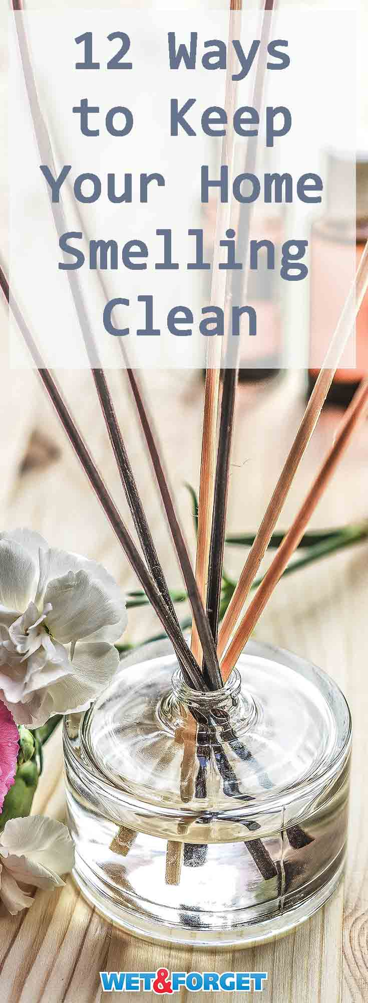 Refresh your home with these 12 easy ways to keep your home smelling clean!
