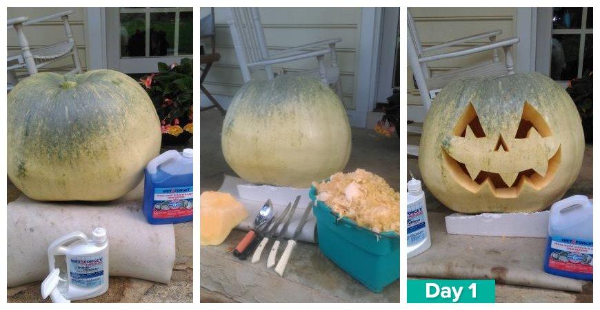 Ask Wet & Forget 2015 Wet & Forget Pumpkin Preservation Challenge