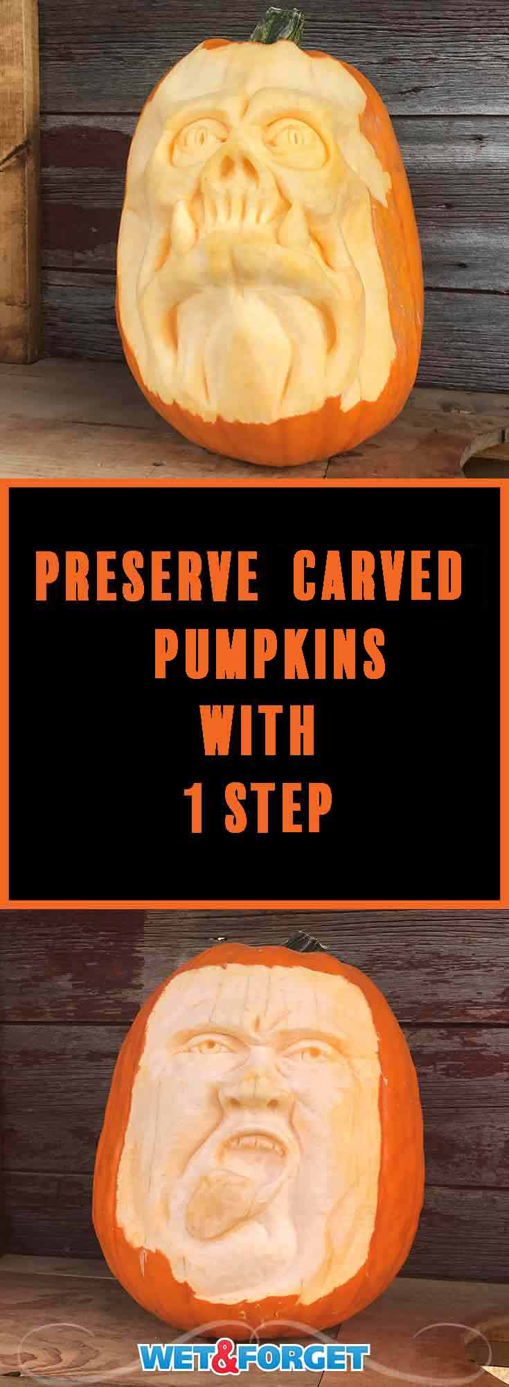 Make your pumpkin carving last longer by preserving it with this easy 1-step process!