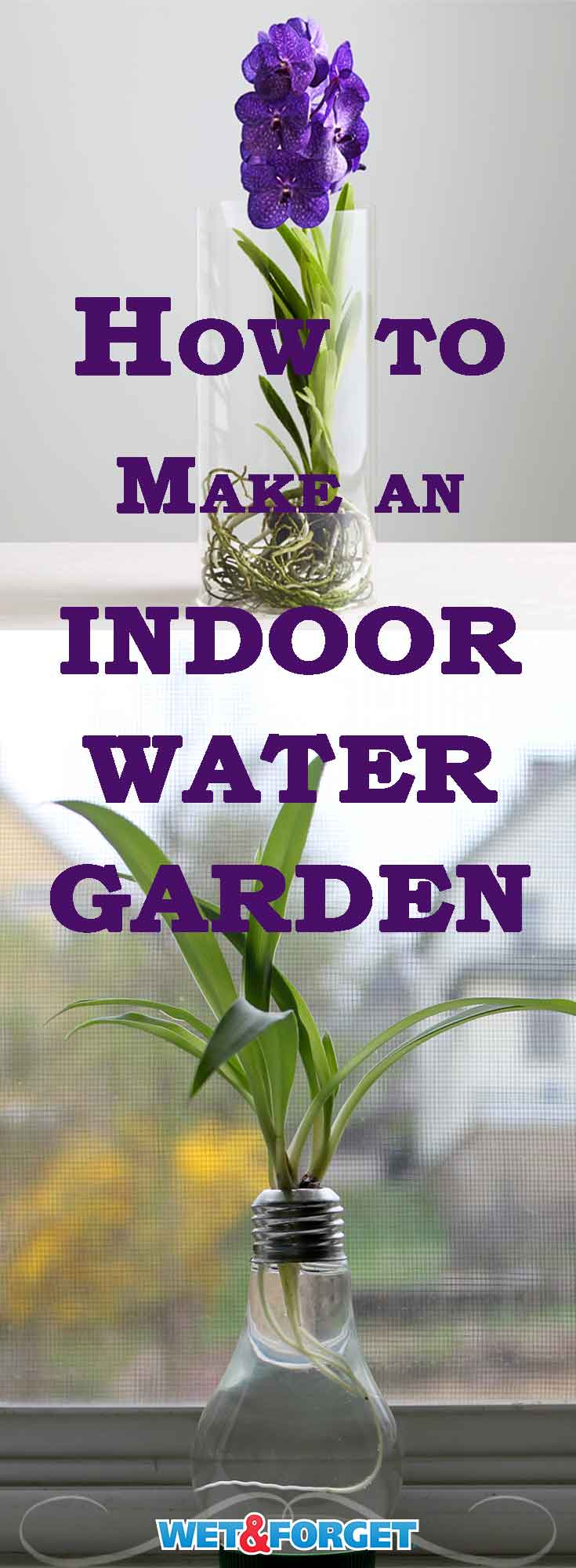 Brighten up your home with an indoor water garden! Learn how to create your own with our easy guide.